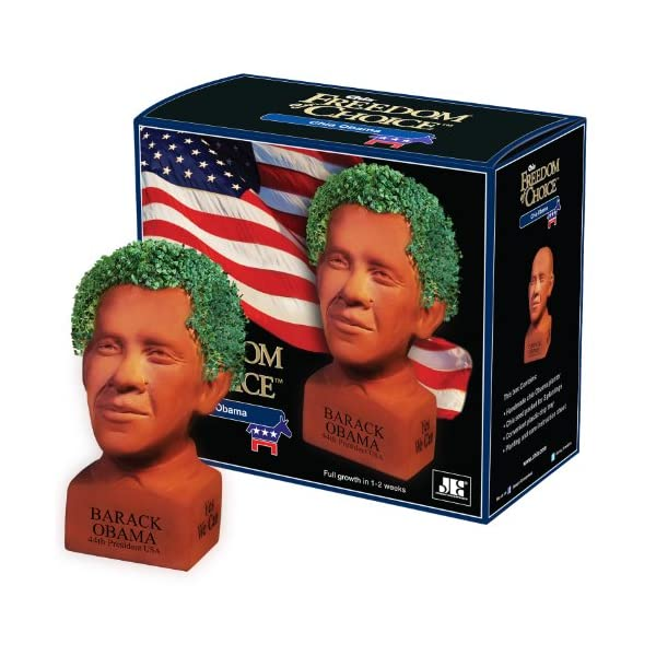 Chia-Hilary-Clinton-Freedom-of-Choice-Pottery-Planter