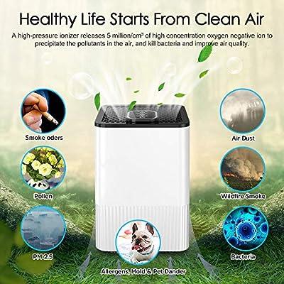Purificador de aire 4 en 1 con filtro HEPA real e ionizador ...
