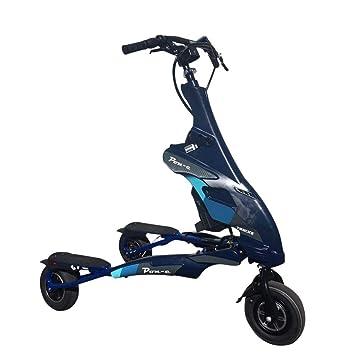 Amazon.com: Trikke - Vehículo eléctrico personal (48 V, 2 WD ...