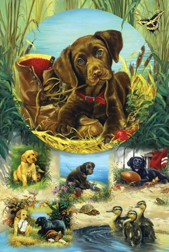 Pond Puppies  1000pc Family Style Jigsaw Puzzle by Sunsout by SunsOut