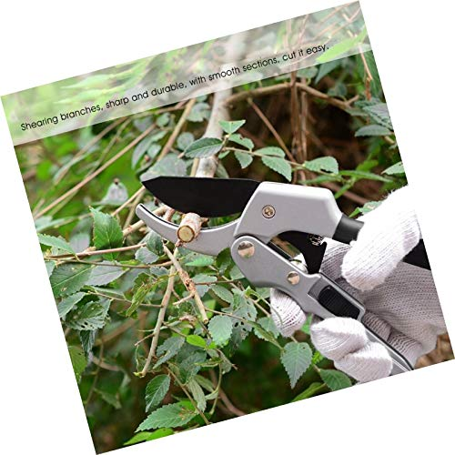 hand-pruning-shears-garden-tree-scissors-pruner