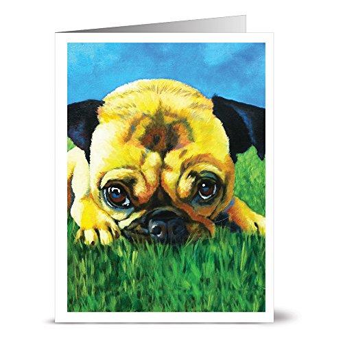 Pretty Pug - 36 Note Cards - Blank Cards - Kraft Envelopes -