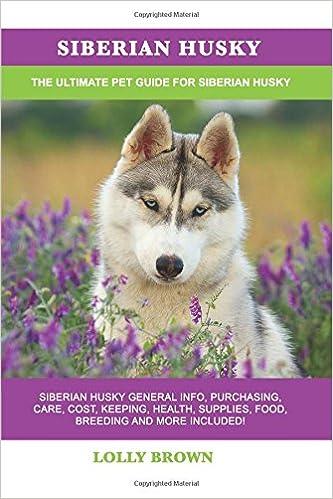 Siberian Husky Siberian Husky General Info Purchasing Care Cost