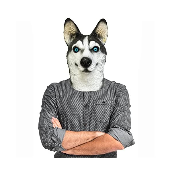 Off the Wall Toys Dogs Husky Dog Costume Face Mask Kennel Club Dog Mask for Halloween Sports and More 1