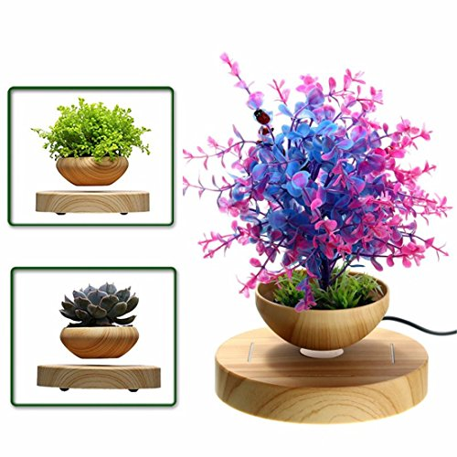 LED Levitating Air Bonsai Pot - Pathonor Magnetic Levitation Suspension Flower Floating Pot Potted Plant for Home Office Decor - Christmas Gift Option