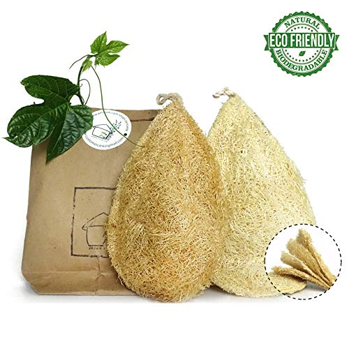 Natural Dish Sponge Vegetable Scrubber for Kitchen 100% Loofah Plant Cellulose Scouring Pad Biodegradable Compostable Dishwashing Zero Waste Product Luffa Loofa Loufa Lufa from Miw Piw