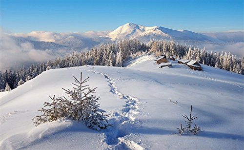 Leowefowa 7X5FT Vinyl Photography Backdrop Christmas Snow Covered Landscape Rudtic Forest Village Ice Mount Nature Winter Scene Xmas Background Kids Children Lover Photo Studio -