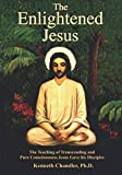 The Enlightened Jesus: The Teaching of Transcending and Pure Consciousness Jesus Gave his Disciples