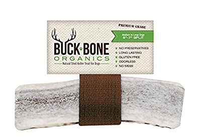 "Elk Antler Dog Chews by Buck Bone Organics ~ All Natural Healthy Chew, Large Split 6-7"", From Montana Elk, Made in USA from Buck Bone Organics"