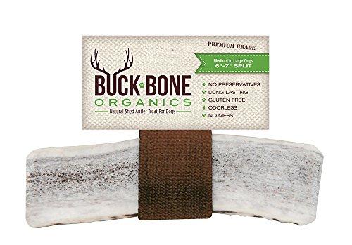 Elk Antler Dog Chews by Buck Bone Organics ~ All Natural Healthy Chew, Large Split 6-7', From Montana, Made in USA - LARGE SPLIT (Large Regular Split)