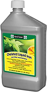 32OZ Chelated Iron (Single)