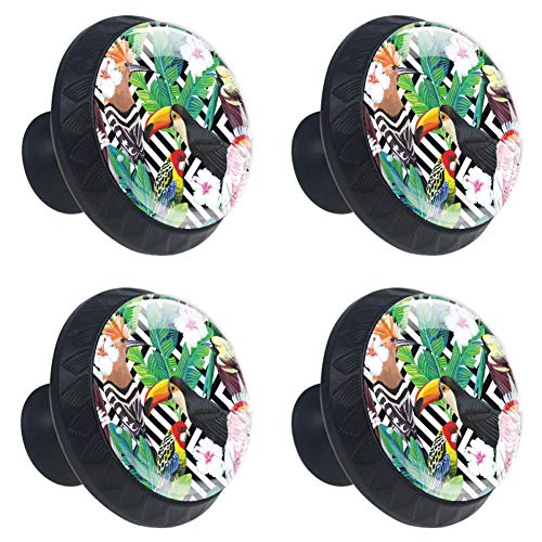 DEYYA 4 PCS 30mm Tropical Bird Toucan Parrot Crystal Glass Cabinet Knob Drawer Pull Handle for Kitchen, Cupboard, Dresser, Wardrobe, etc