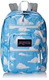 JanSport Big Student Backpack- Sale Colors (Partly Cloudy)