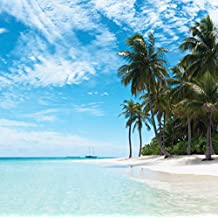 J.P. London SQM2047PS Peel and Stick Removable Wall Decal Sticker Mural Tropical Beach Oasis Getaway at 6 Feet High by 6 Feet Wide