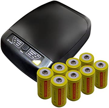 AA AAA C D 9V NIMH NICD Battery Charger with 8 D Size Rechargeable Grey Battery