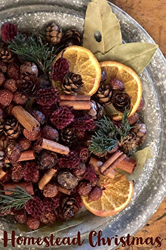 - Homestead Studios Christmas Potpourri - Warm Apple Cinnamon, Spicy Orange with Notes of Clove and Pine. - Perfect Potpourri for Holidays, Fall, Winter