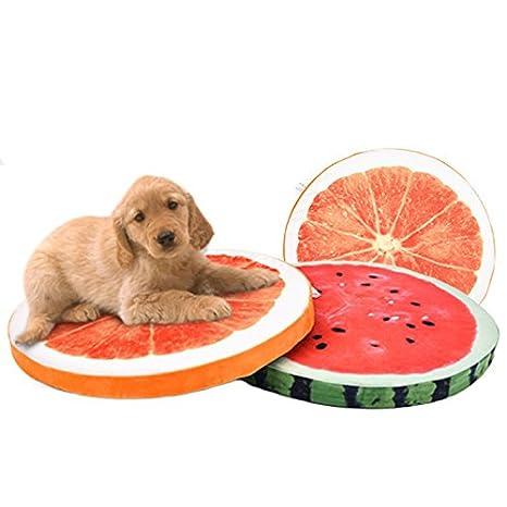 Jlxl Colchón para Perros Cama para Mascotas Lavable Four Seasons Pet Fruits Mat Colchoneta para Mascotas Pet Spring Dogs Dog Mat (Color : A, ...