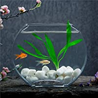 Creative Peach Flower Glass Fish Tank Gold Fish Tank Flat Round Mini ...