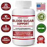 Best Blood Sugar Supports - Blood Sugar Support Supplement 600mg/Capsule, 20 Natural Herbs Review