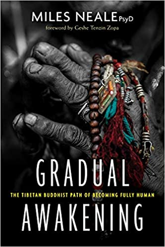 e7567163bd25 Amazon.com: Gradual Awakening: The Tibetan Buddhist Path of Becoming ...