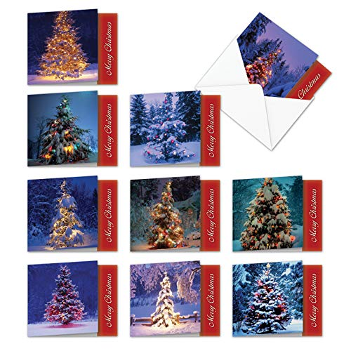 10 Assorted 'Lit for Christmas' Boxed Holiday Tree Cards (4