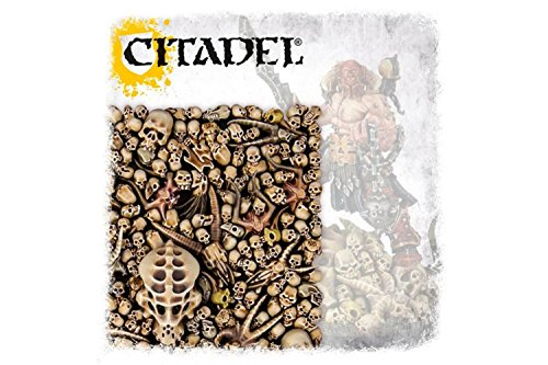 Citadel Skulls ()