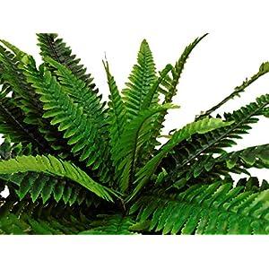 "Boston Fern Bush 29"" Leaves Artificial Silk Plant Greenery 30 - 5601GN 1"