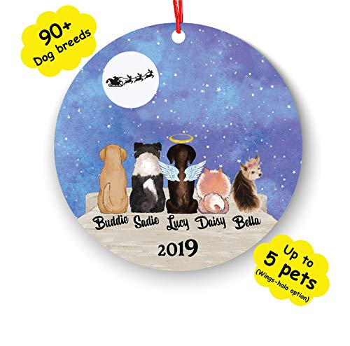 Personalized Dog Cat Custom Pet Name & Picture Christmas Ornament Idea Funny Pet Customizable Gift for Birthday Fur Mom Dad Gifts for Dog Lover (Number of pet 3) (Christmas Portrait Cat Family)