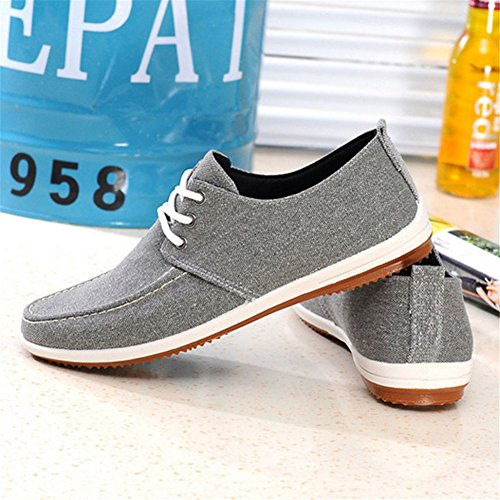 Lace Canvas Grey Shoes up Men's Casual Comfortable Fashion FIq5x8F
