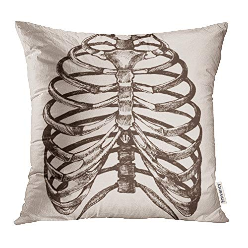 Emvency 18x18 Inch Throw Pillow Covers Decorative Case Ribcage Human Rib Cage of The Skeleton in Realistic Form Anatomical Sketch Bones Cover Square Pillowcase Cushion Cases Print On Two Sides