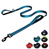 #3: DOGSAYS Dog Leash 6ft Long - Traffic Padded Two Handle - Heavy Duty - Double Handles Lead for Control Safety Training - Leashes for Large Dogs or Medium Dogs - Leash Dual Handle - Reflective (Blue)