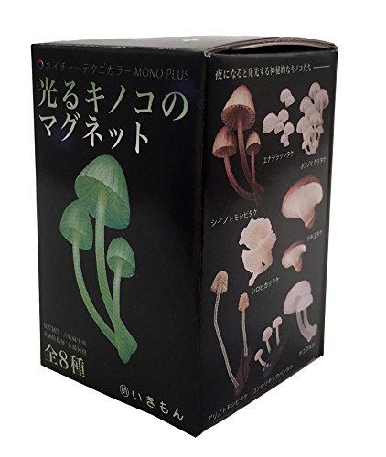 Kitan Club Luminous Mushrooms Collectible Magnet Figure Mystery Blind Box - 1 Piece (Collectible Magnet)