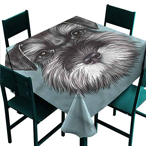 Iridescent cloud Animal Elegance Engineered Tablecloth Cute Baby Schnauzer Puppy for Kitchen Dinning Tabletop Decoration W70 x L70