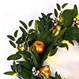 MARTHA STEWART Gold Gilded Fruit Pre-Lit Artificial Holiday Wreath, Battery Operated, 24 Inch, Clear Lights