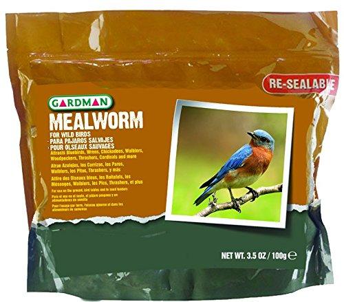 Gardman BA04510 Mealworm Tub Small, 3.5 oz.
