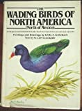 The wading birds of North America (north of Mexico)