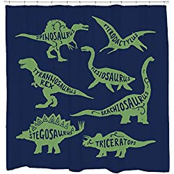 Dinosaur Types Shower Curtain - Kids Childrens Bathroom Decor - Nursery Babies Room - Blue Green Standard Size - Fits Bathtub - 72 x 72