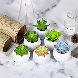 Keepower Fake Succulent Plants 6pcs Mini Succulents Faux Succulents Potted Artificial Succulent Plants for Family Decoration 26