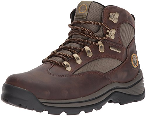 Timberland Men's Chocorua Trail Gore-TEX Mid Hiking Boot (9 D(M) US/42 EUR, Brown/Green)