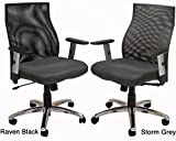 Ergo Vibrant Office Seating - Raven Black