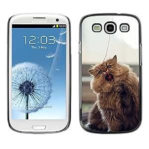 EJOY---Cubierta de la caja de protección la piel dura para el / Samsung Galaxy S3 / --Gato que juega