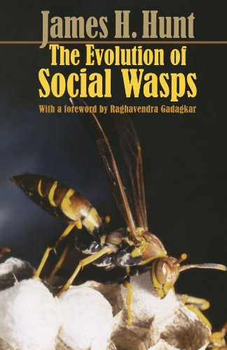 The Evolution of Social Wasps (Paper Lanterns Waterproof)