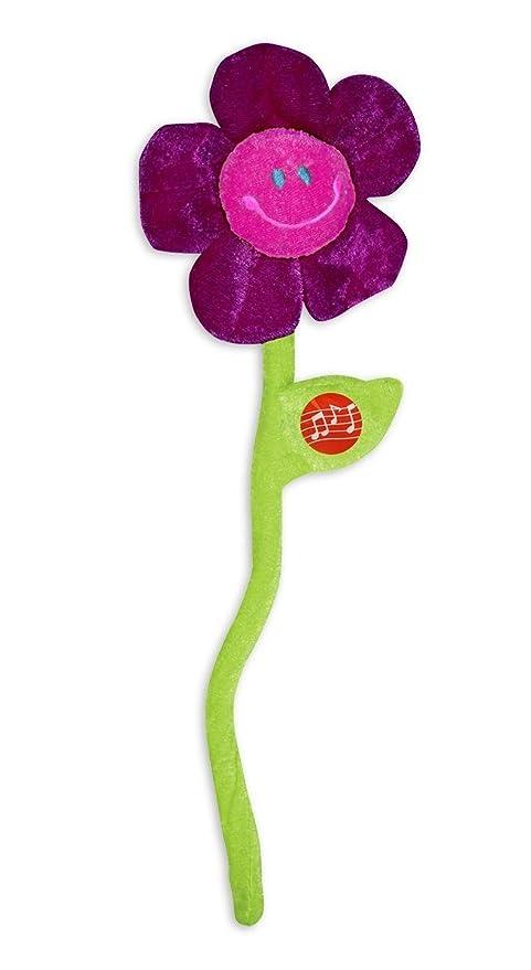 Close Up Flor de felicitaciones de Peluche con música de ...