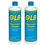 71104A-02 Algimycin 2000 Alguicida para Piscinas, 1-Quart, paquete de 2