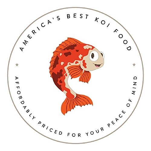 America's Best Koi Food 50 lbs Fish Food Large 1/4'' Floating Pond Pellets for Koi Goldfish and Pond Fish - 32% Protein - Kenny's Bargain Bits - Net Weight: 50 lbs (22.8 kg) by America's Best Koi Food (Image #2)