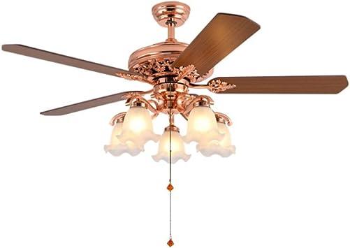 Wolland Ventilador de techo LED vintage de 52 pulgadas con 5 luces y 5 aspas de