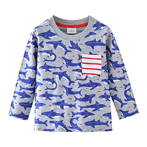 (HUAER& Baby Boys Cotton Long Sleeve T Shirt Cartoon Dog Dinosaur Rocket Print Tops (3-4T(height95-100cm/37-38inch), Grey &)