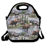 Bull Moose Nature Scenic Wildlife Animals Lake Lunch Bag Lunch Tote Lunch Pouch Handbag Made For Women, Men And Kids
