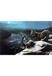 """Kevin Daniel Signed and Numbered Bobcat Print NIGHT WATCH 27""""x18"""""""