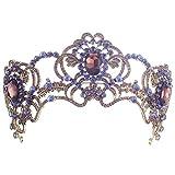 Dowoo Baroque Vintage Purple Wedding Bridal Rhinestone Headband Queen Crown Tiara(HG21)